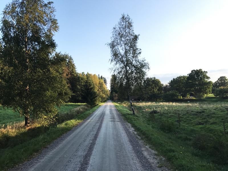 Schwedenstraße