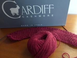 cardiff8